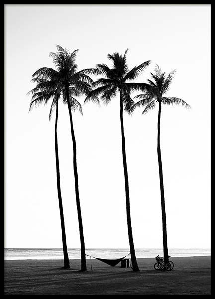 Palm Trees On Beach Affiche dans le groupe Affiches / Nature chez Desenio AB (10233)