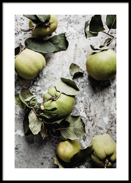 Fresh Quince Fruit Poster